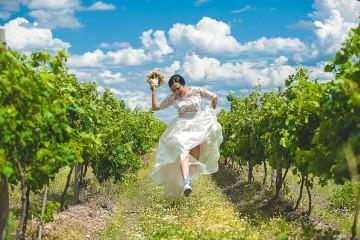 Винарски изби